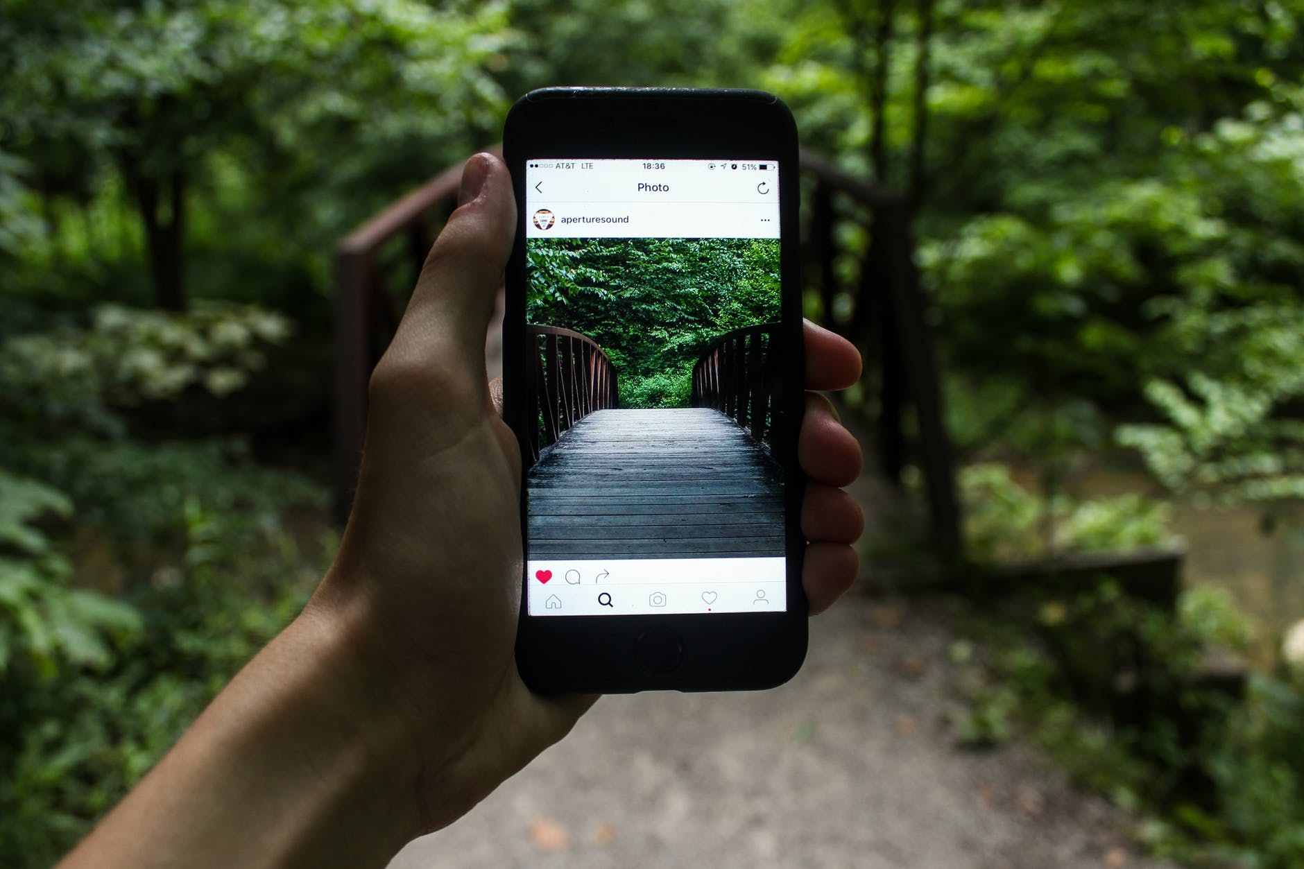 Your Choice Able Ways To Integrate Instagram With WordPress